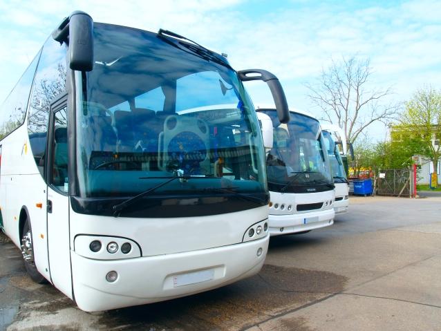 Trzy autobusy stojące na postoju