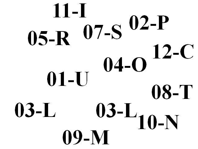 12 różnych symboli niepełnosprawności, np. 04-O, 05-R, 10-N itd.